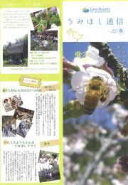 うみほし通信 vol.61春