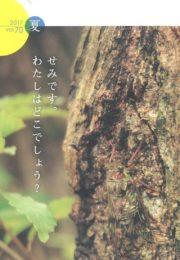うみほし通信vol.70 夏