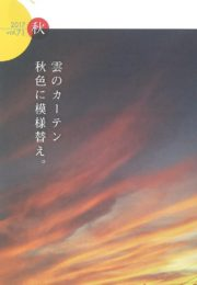 うみほし通信vol.71 秋