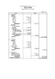 貸借対照表(平成30年3月31日現在)