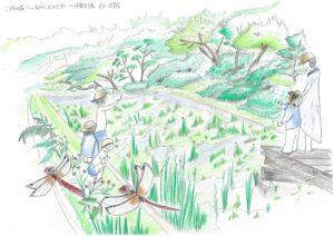 【イメージ図】こどもの森ハッチョウトンボのビオトープ修景計画jpg