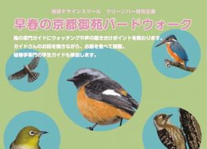 eyebird